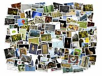 Stack of photos isolated from the background