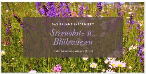 streuobst_bluehwiesen